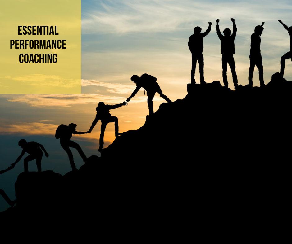 Essential-Business-Coaching-climb
